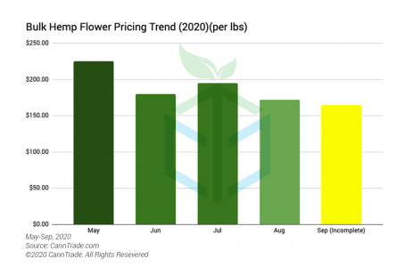 Average Bulk Hemp Flower Pricing May to September